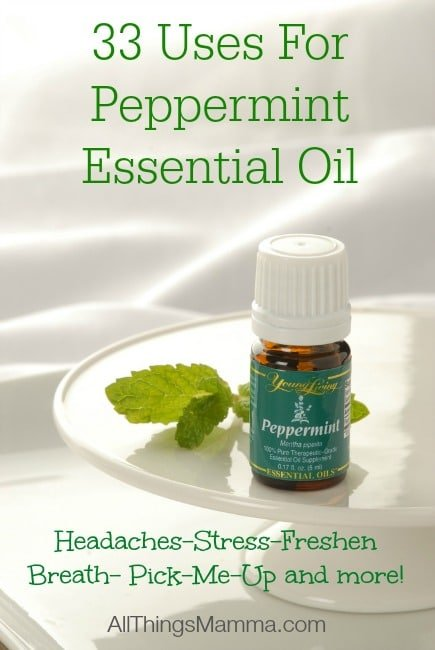 Thieves Oil – 50 Ways To Use Thieves Essential Oil