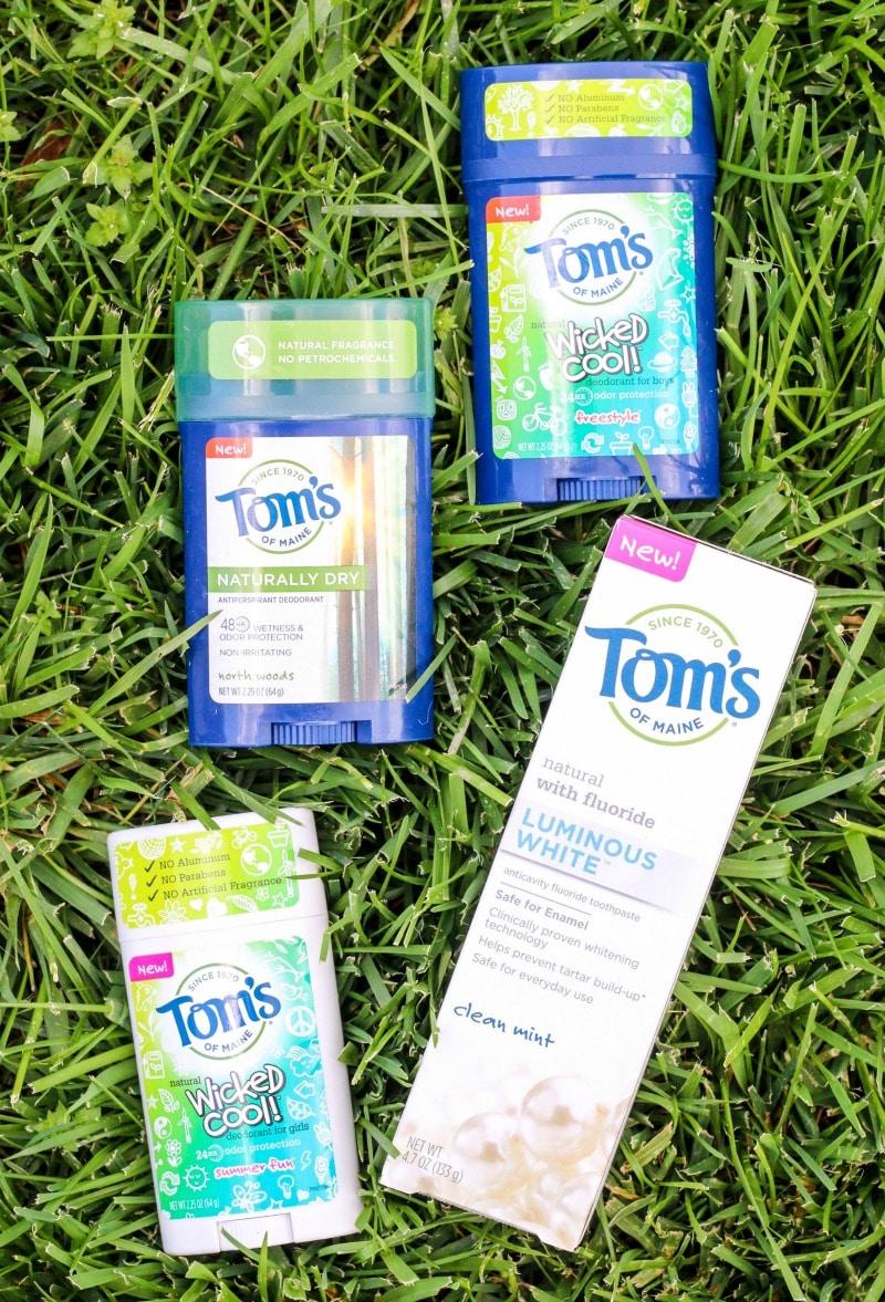 Toms-2