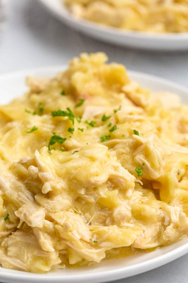 close up shot of creamy chicken dish on white plate